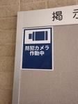 RIMG4699.JPG